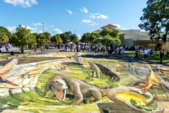 Sarasota14-2